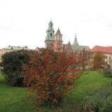 Экскурсия по Кракову